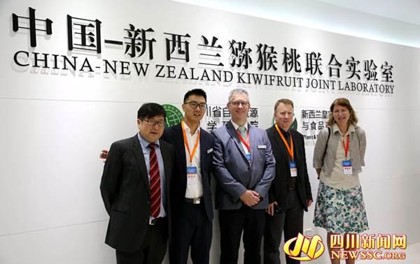 四川为全球最大的红肉猕猴桃生产基地 中新联合实验室领跑红肉猕猴桃研究