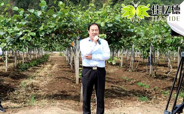 陕西各级领导出席百瑞猕猴桃研究院 百瑞猕猴桃花粉