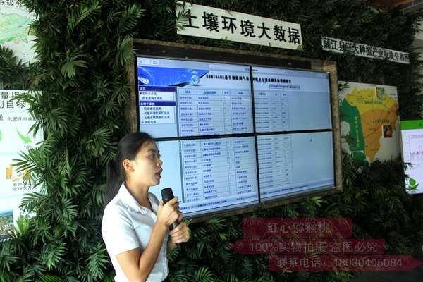 借助信息技術 蒲江打造頂級獼猴桃工程中心