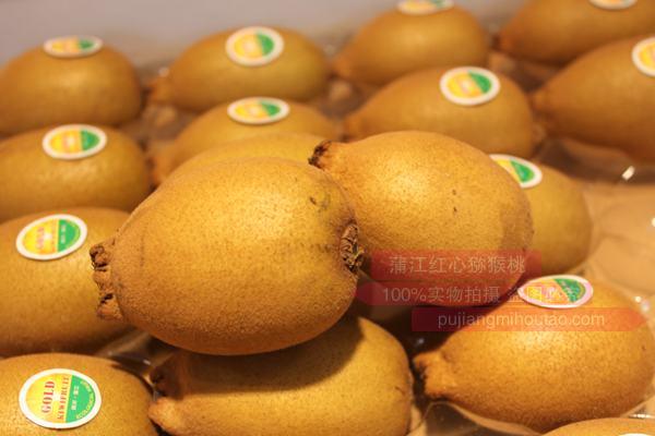 金果猕猴桃