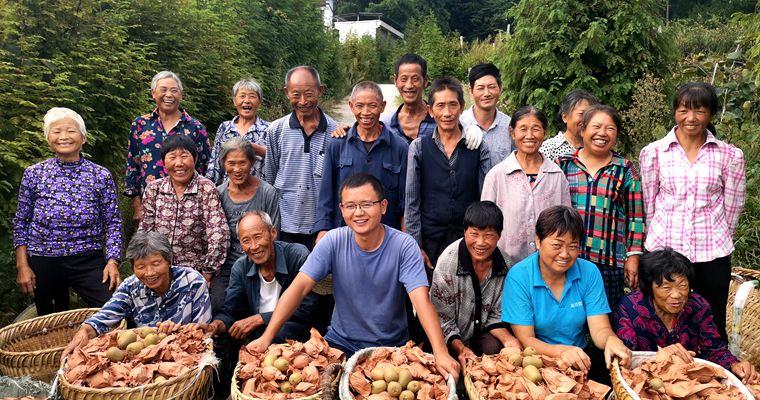 播宏公司在贵州遵义的红心猕猴桃基地2019年挂果