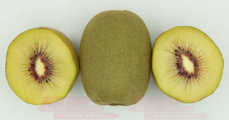 蒲江红心猕猴桃是怎样成长起来的那?