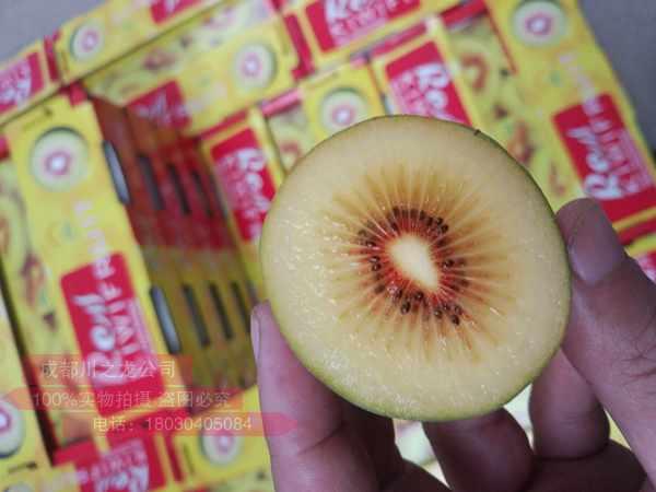 即食红心猕猴桃