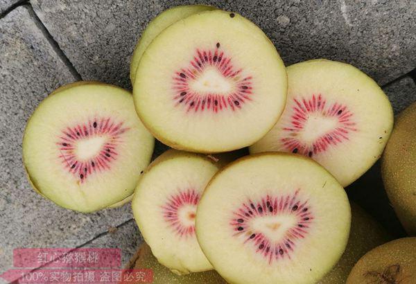 东红猕猴桃多少钱一斤