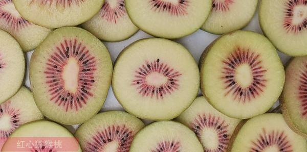 红心猕猴桃团购价格多少钱一斤