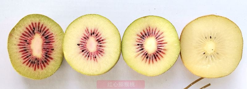 有机红心猕猴桃团购价格多少钱一斤