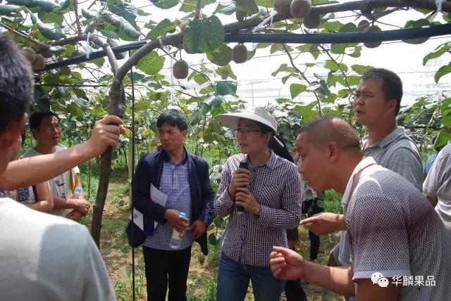 貴州獼猴桃實驗站在六盤水水城縣掛牌揭幕