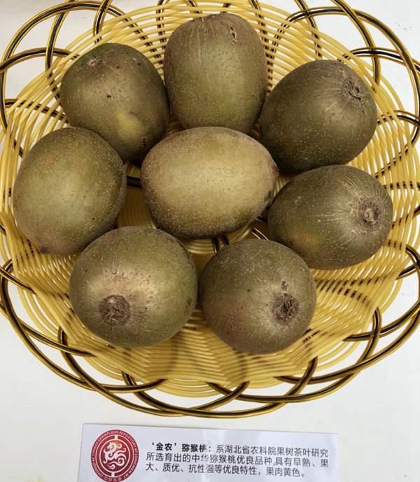 金农猕猴桃
