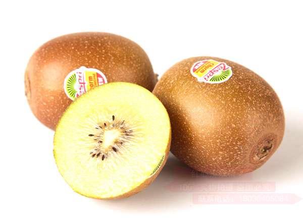 精选有市场前景好的黄心猕猴桃品种推荐