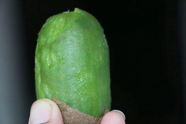 贵长猕猴桃多少钱一斤