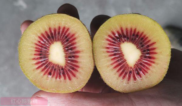猕猴桃价格走低 如何走出恶性循环 种出甜的猕猴桃消费者才喜欢