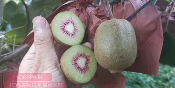 河南省南阳市西峡白白色入选中国特色农产品优势区