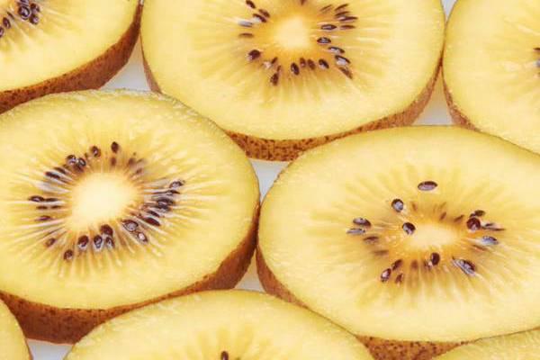 最新黄心猕猴桃的品种给大家梳理一下