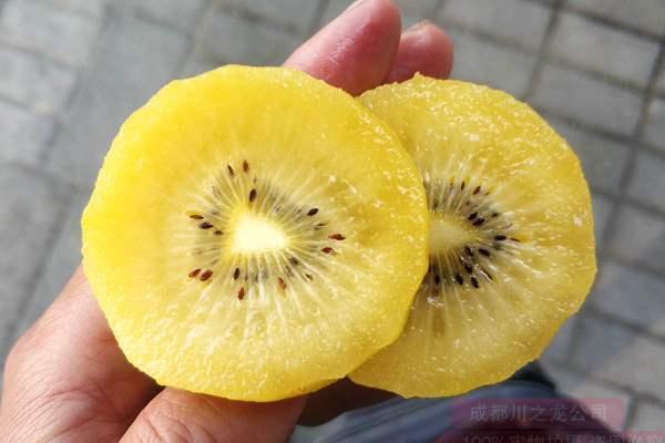 黄肉猕猴桃