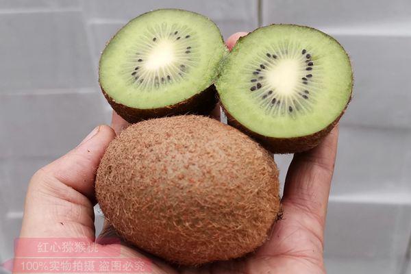 贵州瑞玉猕猴桃
