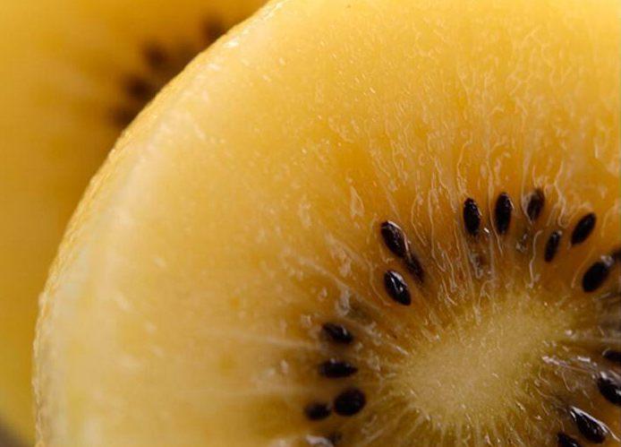 猕猴桃籽实种子