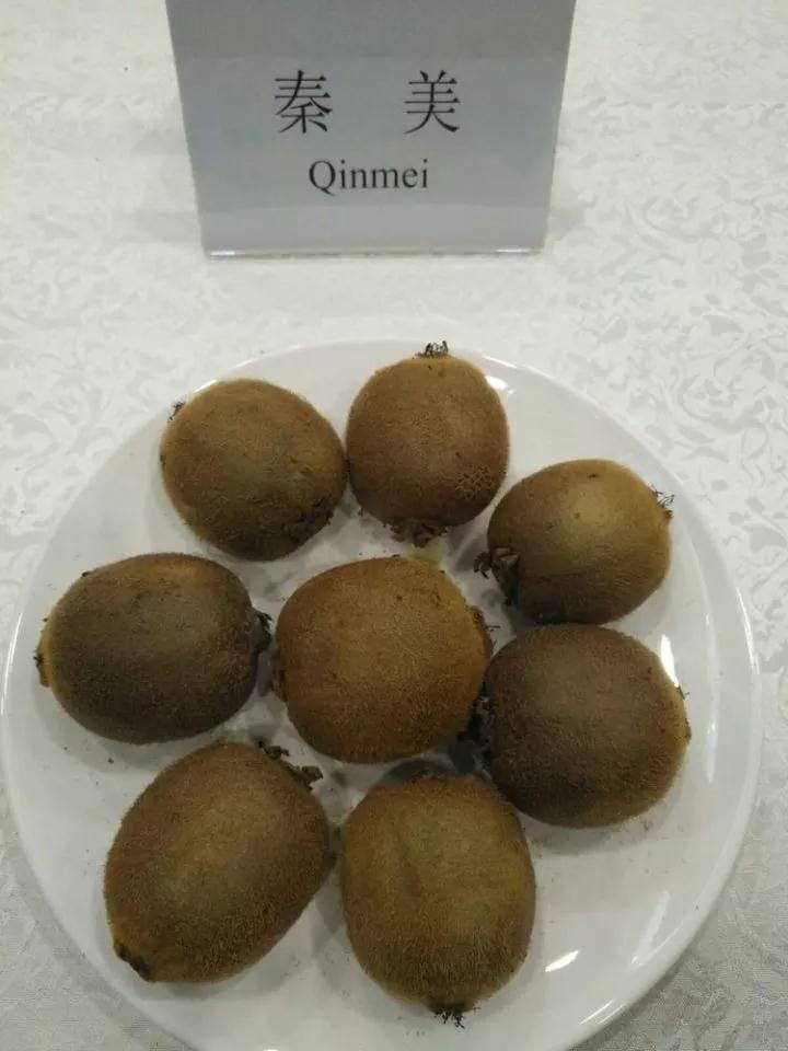陕西绿心猕猴桃品种
