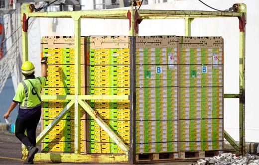 去年,佳沛让新西兰金奇异果果农狂赚82亿