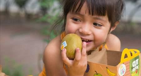 同占全球1/3销售份额!中国猕猴桃产业是否已经赶上新西兰