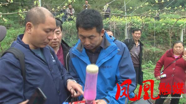 猕猴桃种植技术专家高昊昱到湖北凤凰培训病虫防治技术